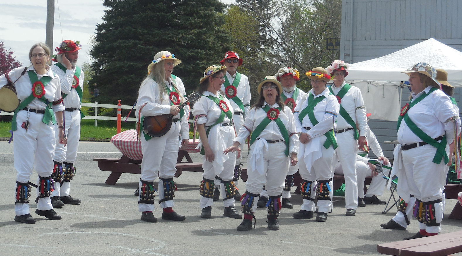 Pocking Brook Morris Dancers